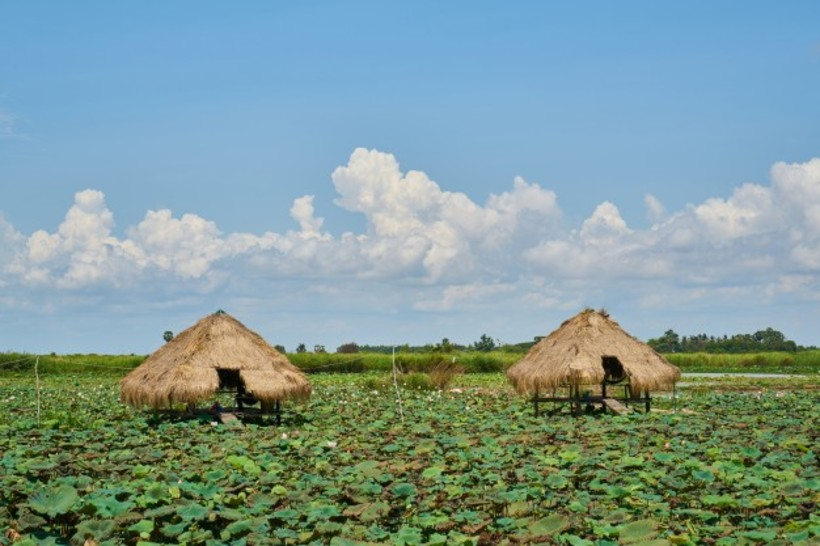 Cambodia Landscape