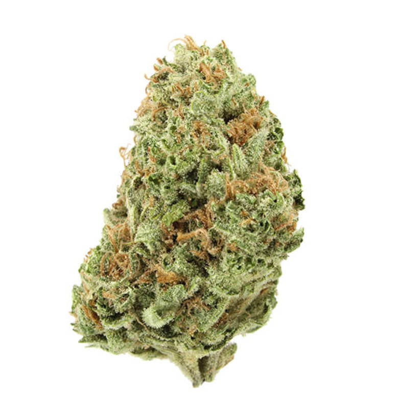 The Strongest Cannabis Strains In Denver