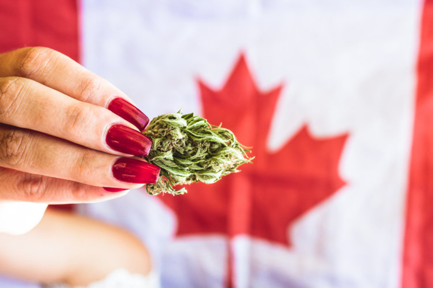 420 Friendly Hotels Canada