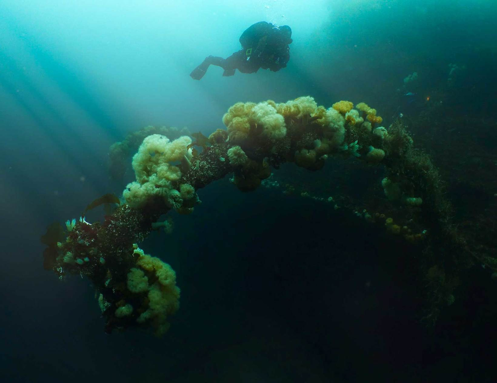 Dive into history in Dyrøy