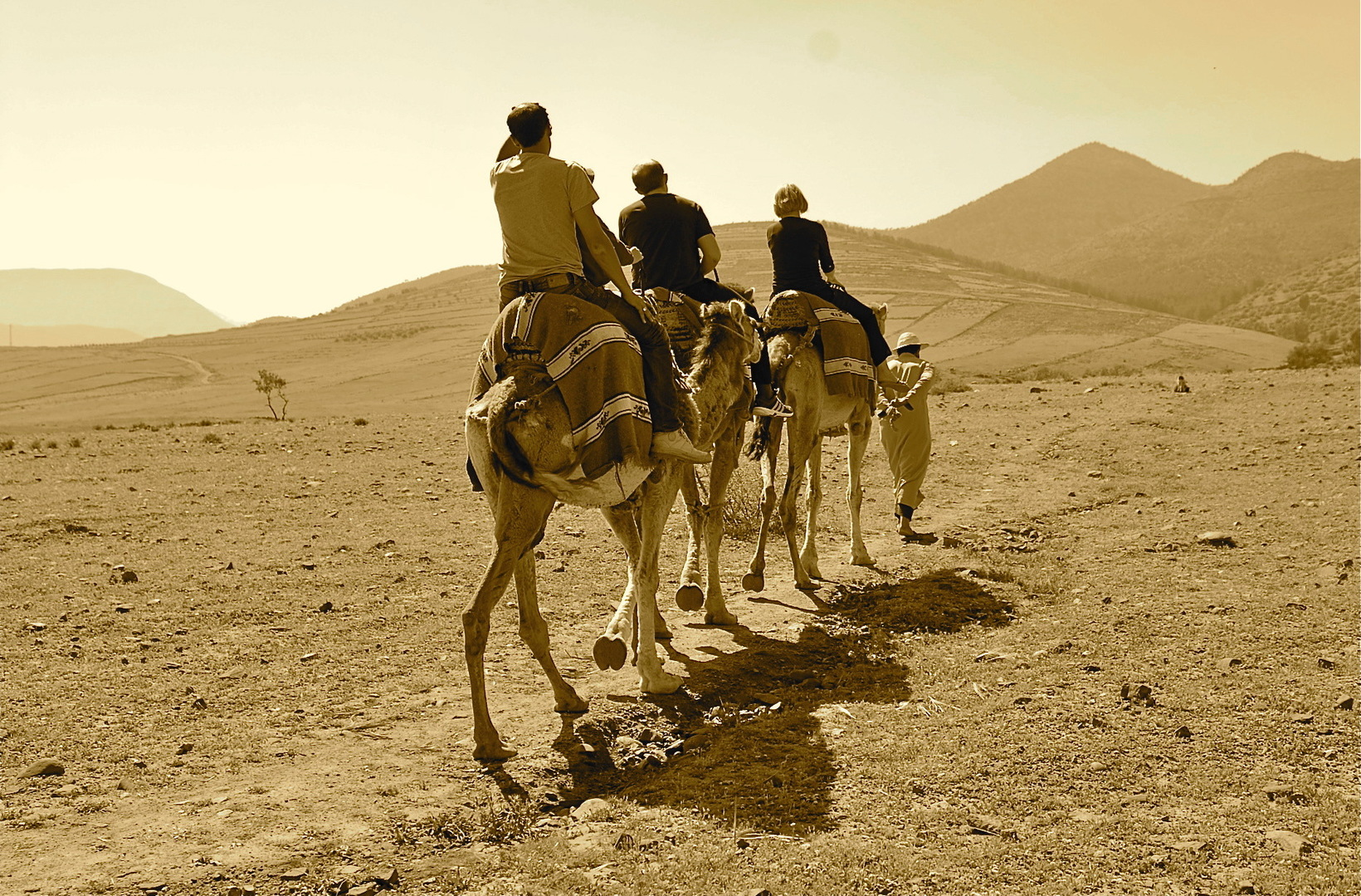 BESPOKE MOROCCAN DISCOVERY TOURS