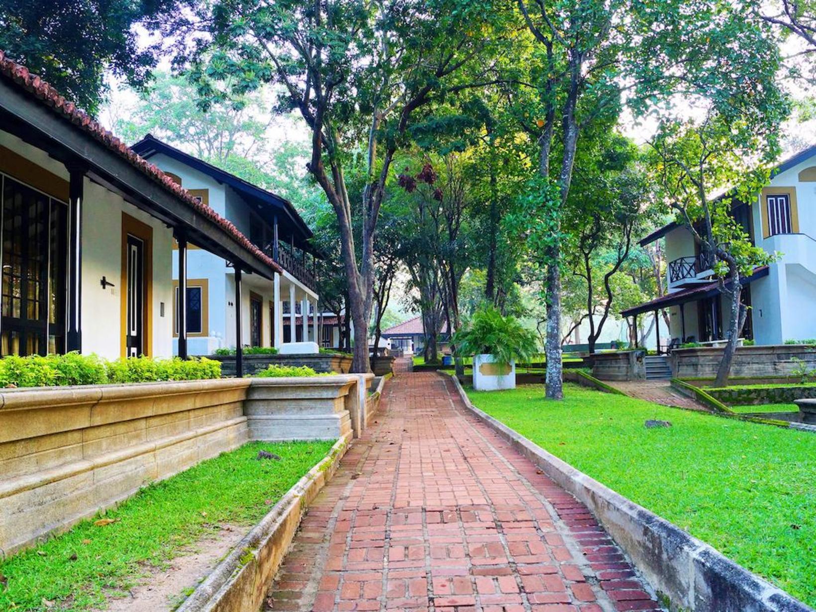 Cinnoman Lodge, Habarana
