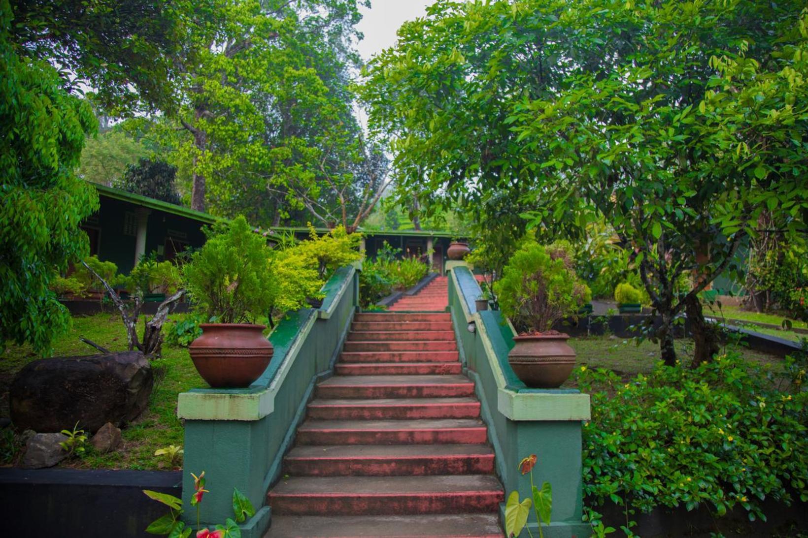 Blue Magpie Lodge Sinharaja, Ratnapura