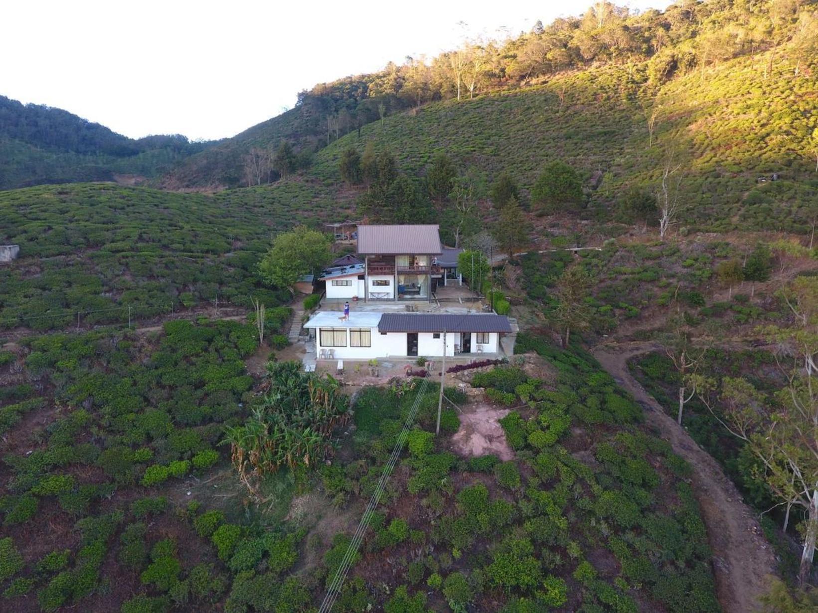 Hill Safari, Ohiya