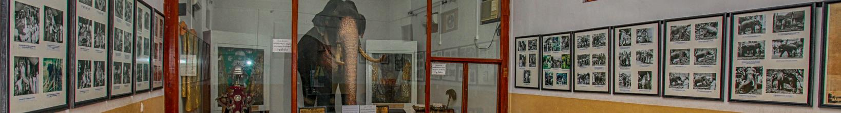 Raja Museum, Kandy