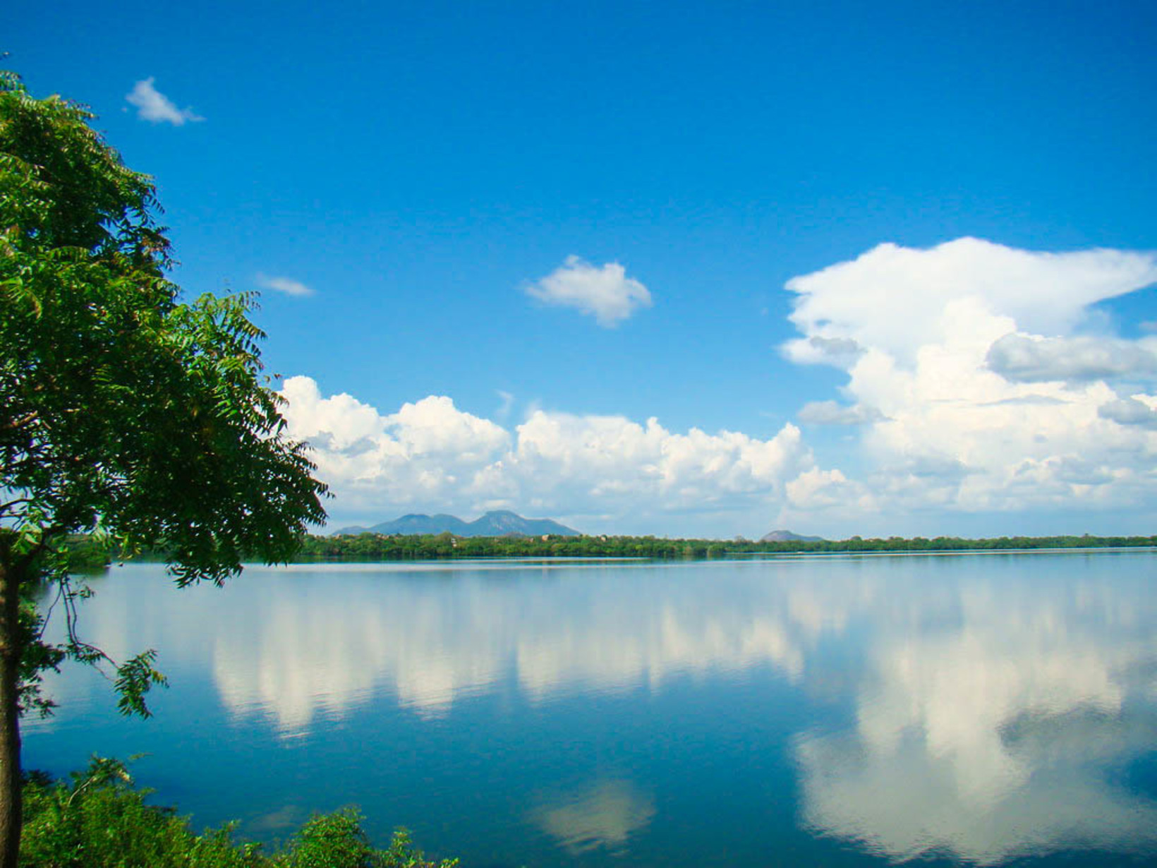 Kala Wewa Reservoir - 【Lakpura™】