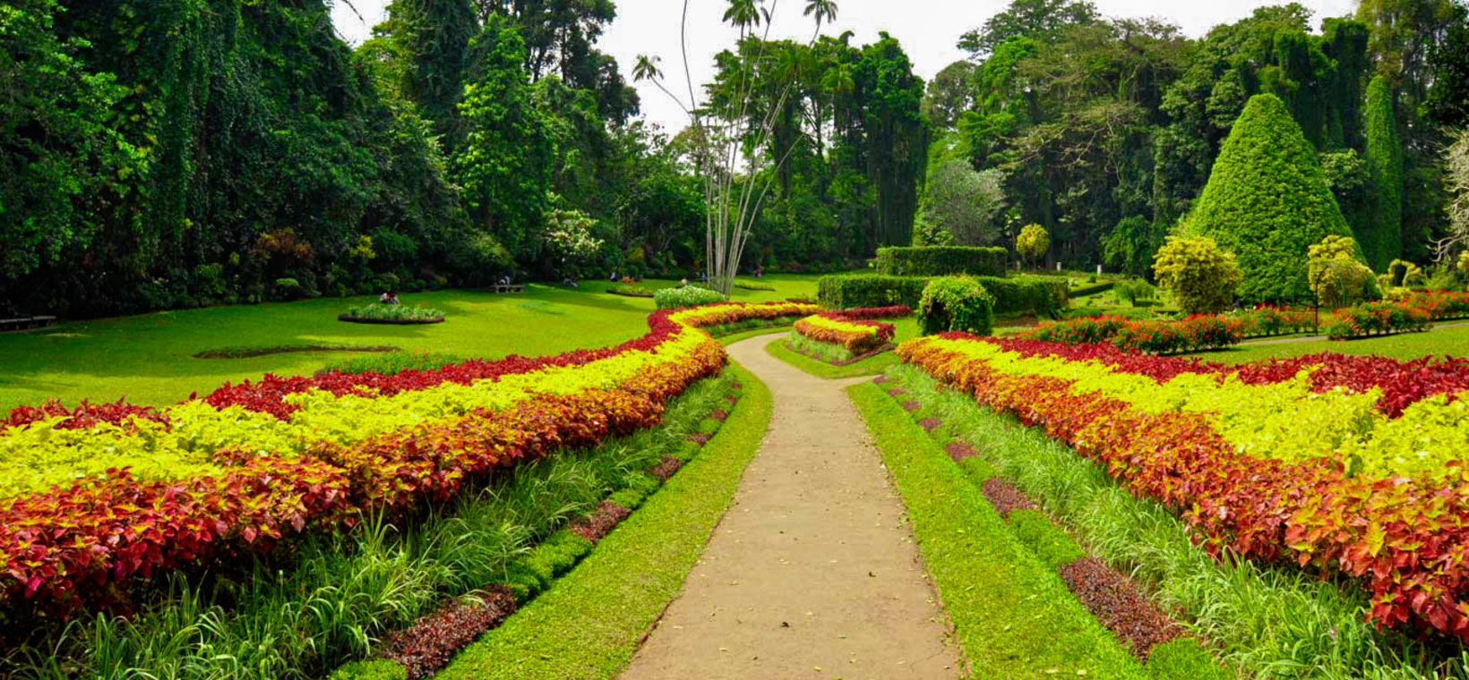 Things to do in Peradeniya
