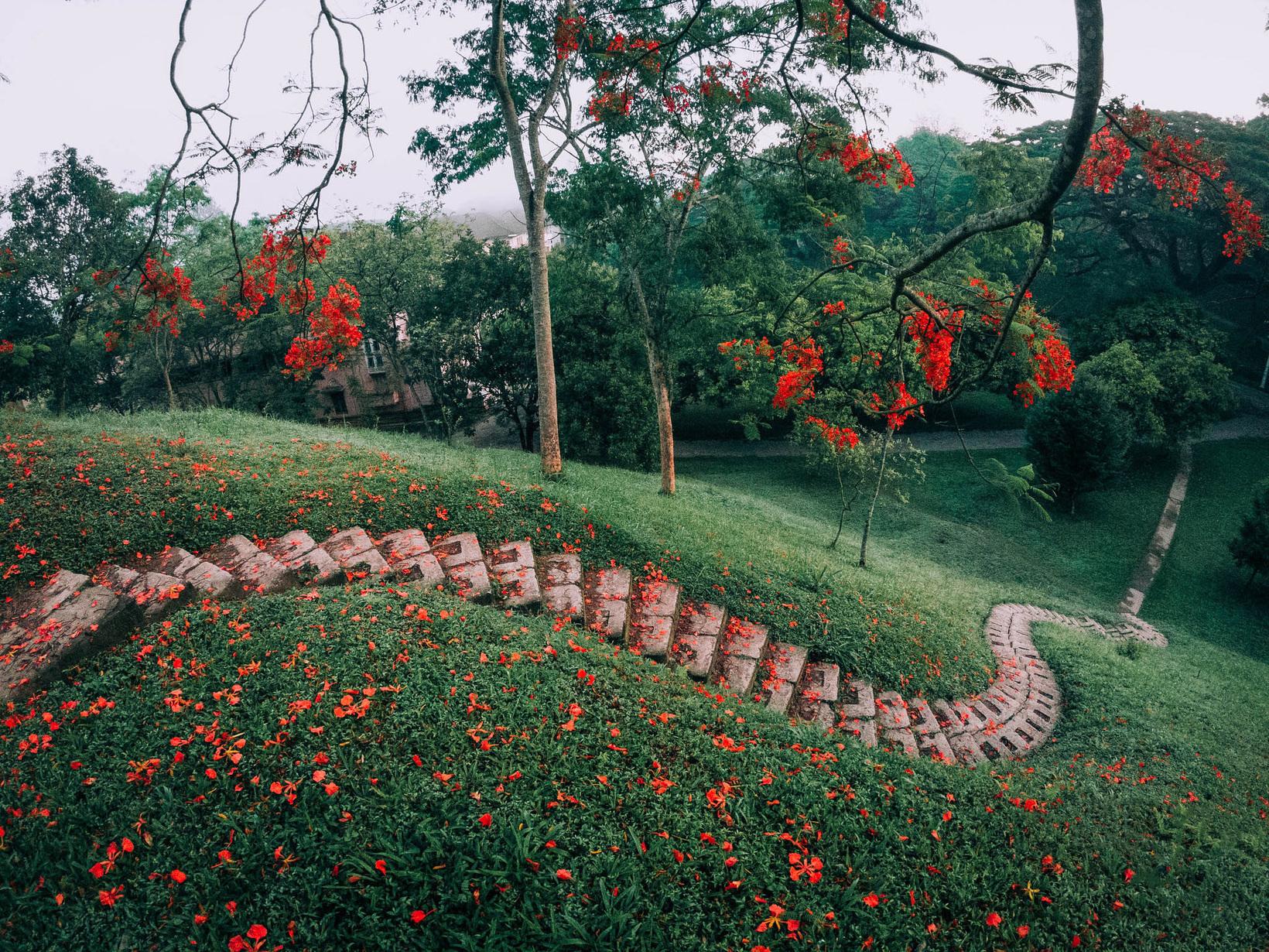 Botanical Gardens in Sri Lanka