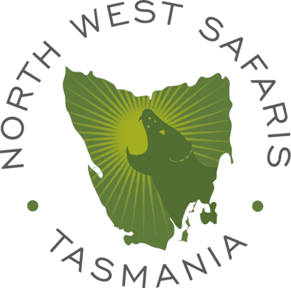 North West Safaris