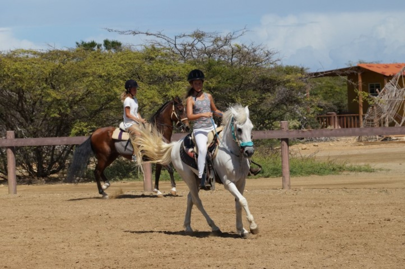 How can you learn horse riding