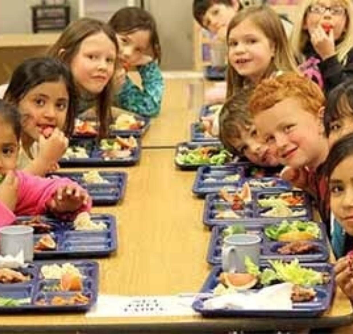 Healthy School Food on the Congressional Chopping Block?