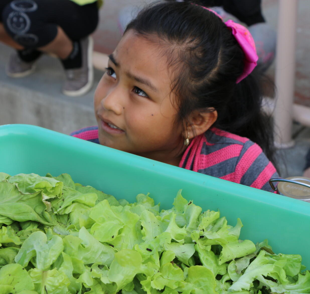 Reinventing Healthy Eating with Salad Bars to Schools