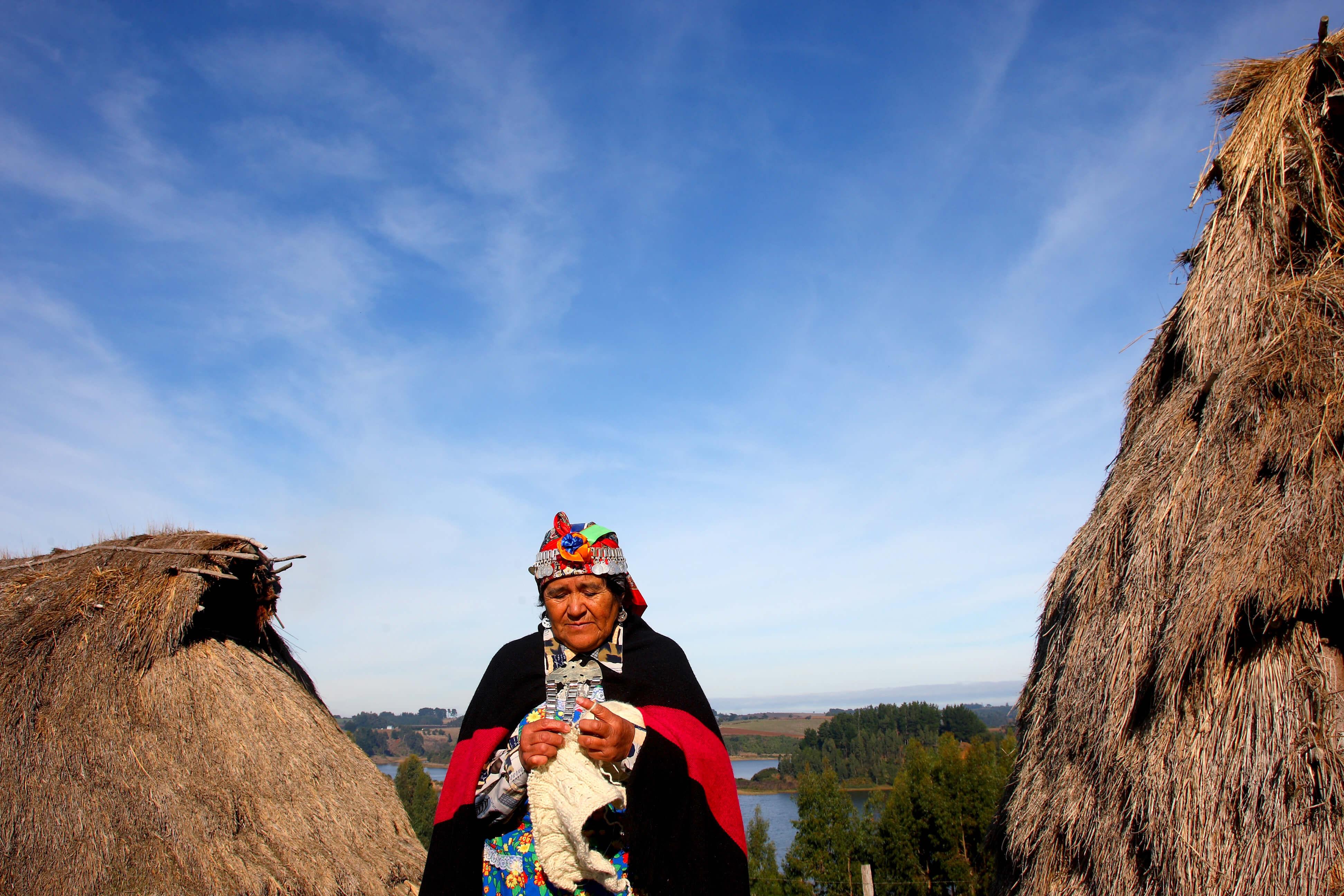 Risultati immagini per mapuches