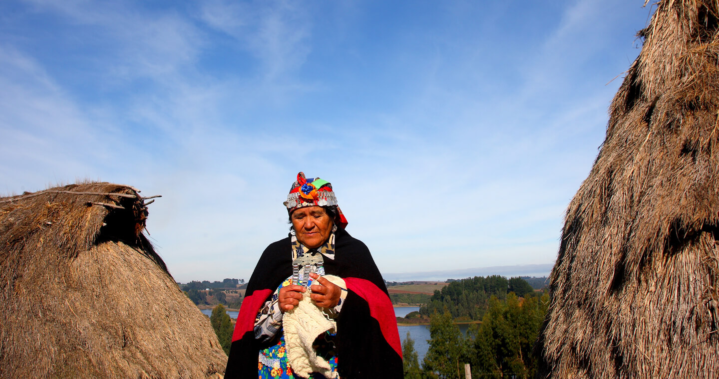 Experiences with the Mapuche people