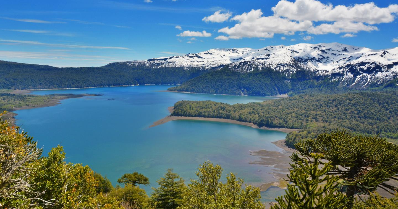 Image result for Parque Nacional Conguillio