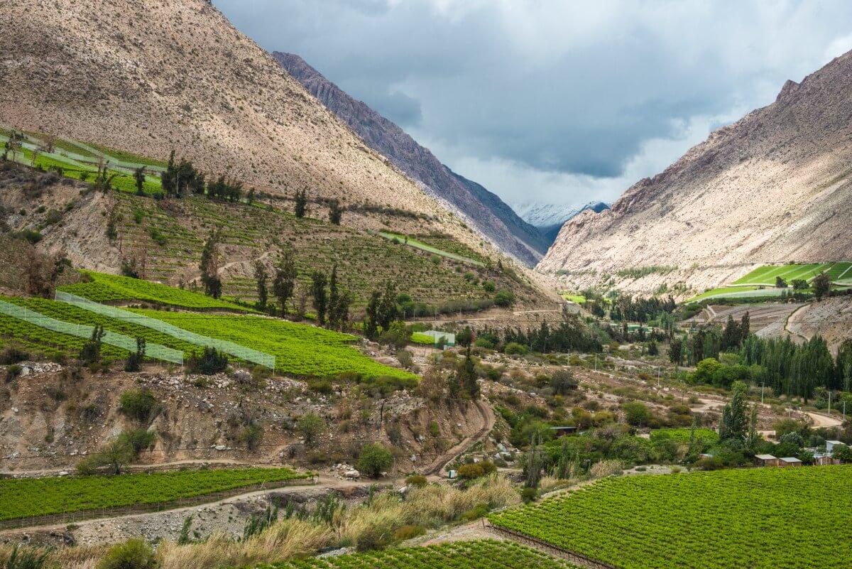 Valle del Elqui: Rutas de vino en Chile
