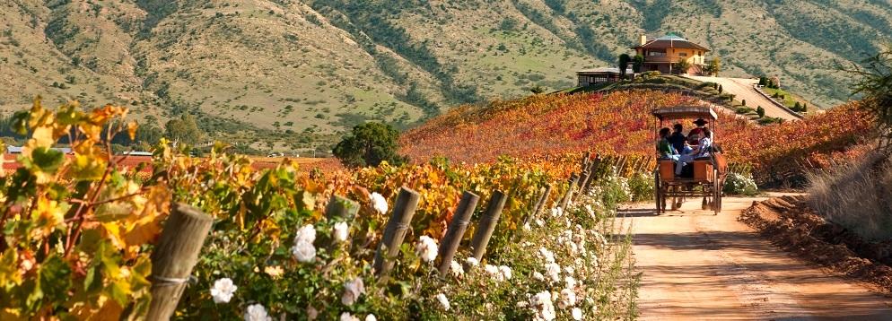 El Valle de Colchagua y paseos en carreta es uno de los Destinos turísticos en Chile