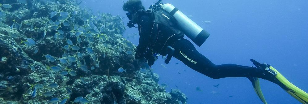 El buceo es una de las actividades en Rapa Nui (Isla de Pascua)