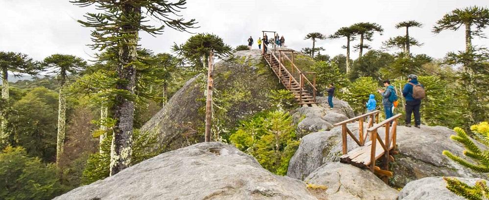 Mirador en un trekking en el Parque Nacional Nahuelbuta