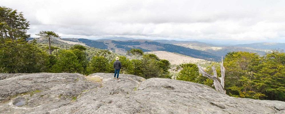 Paisaje del trekking en el Parque Nacional Nahuelbuta