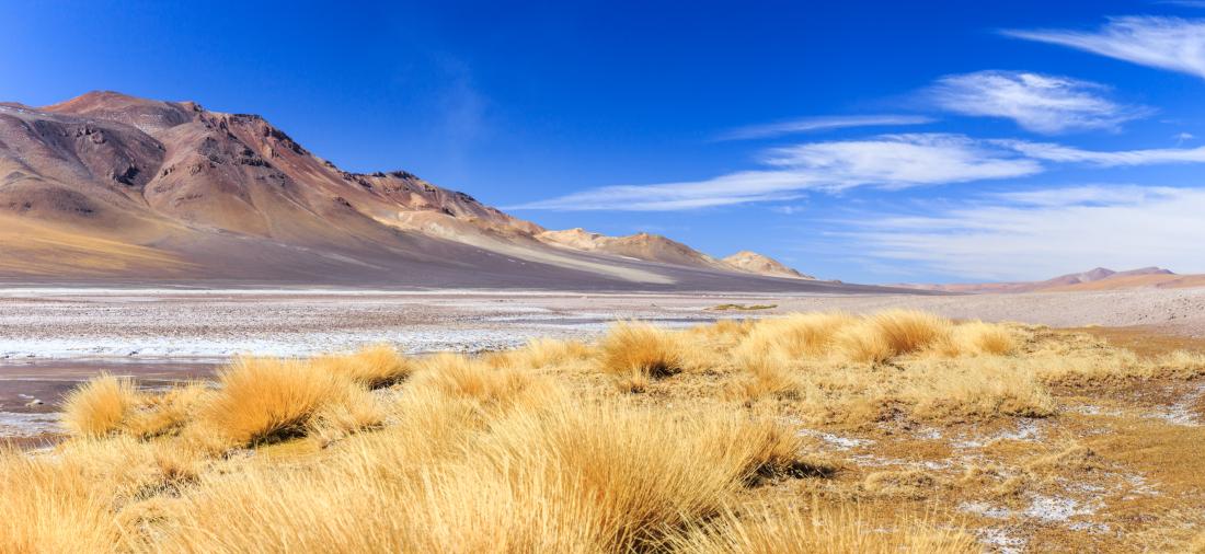 Imagen panorámica del Salar de Tara, donde se aprecia el contraste de las montañas con el cielo despejado en pleno desierto.