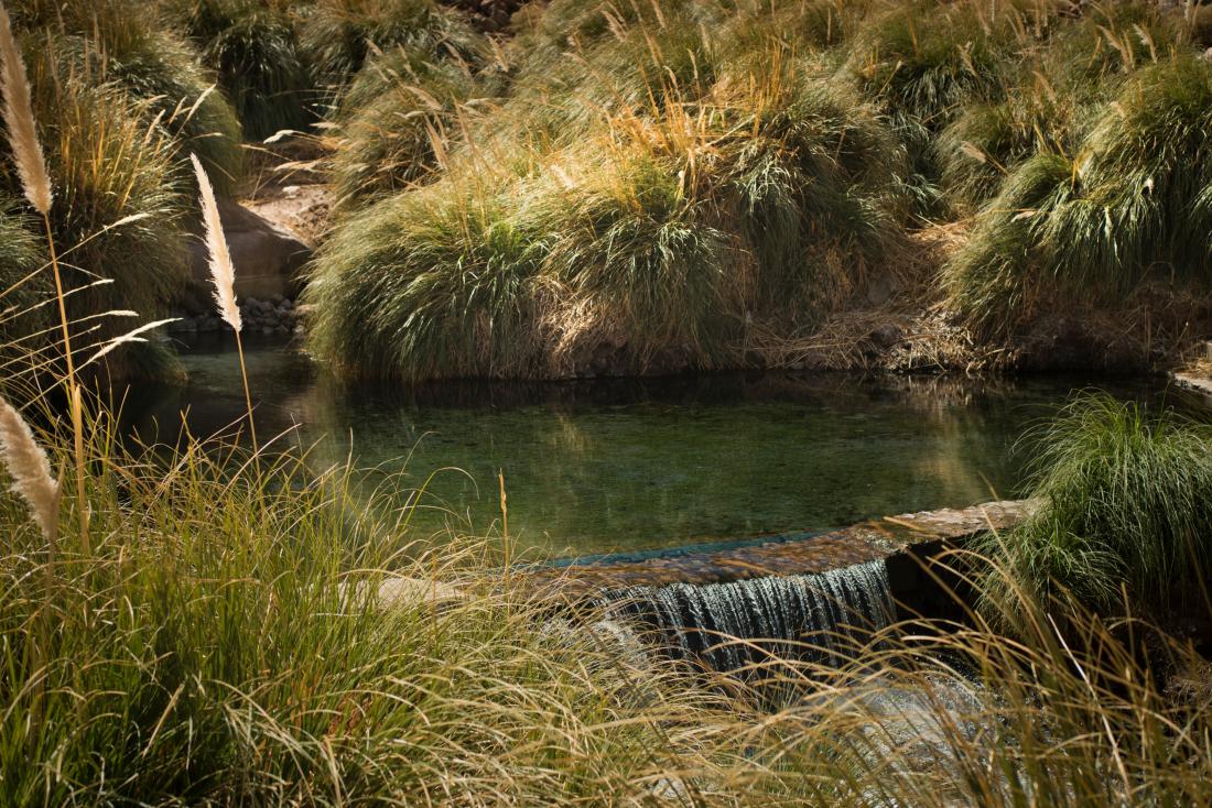 Imagen de uno de los pozones de agua tmperada de las Termas de Puritama