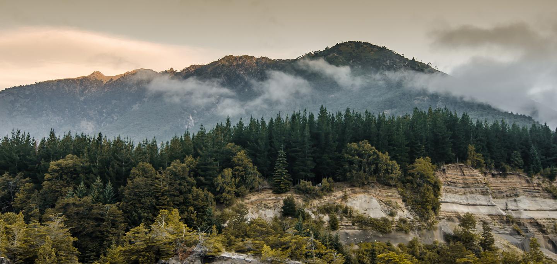 Imagen de los bosques cubiertos por neblina, enmarcado por unas imponeentes montañas, en el Parque Nacional Conguillio