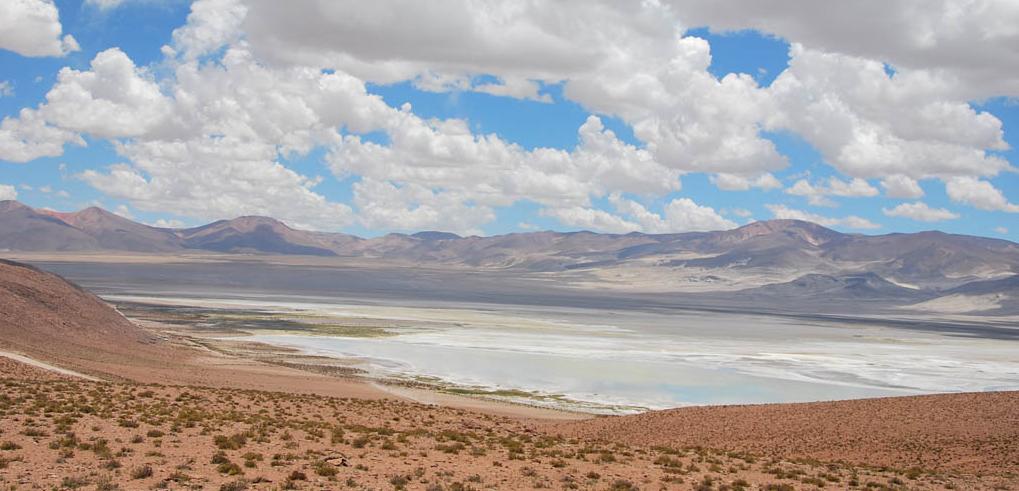 Imagen panorámica del Parque Nacional Salar de Huasco donde se aprecia el cielo con nubes claras y la belleza de su salar.