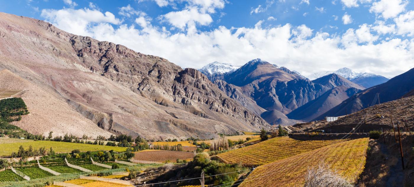 Fotografía panorámica de los valles de la región de Coquimbo, donde se ve el hermoso contraste de colores del verde los viñedos, el azul del cielo y los tonos dorados de las montañas.