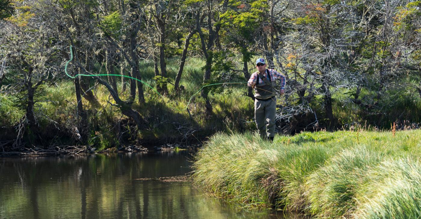 Imagen de un hombre practicando la pesca con mosca a la orilla de un río en el sur de Chile, en medio de una verde vegetación.
