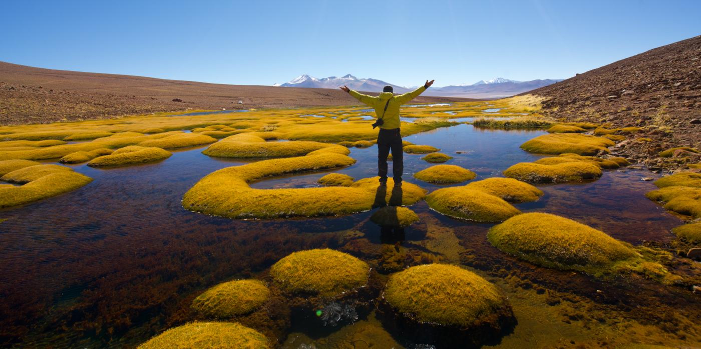 Imagen de un turista disfrutando de las lagunas naturales de los Ojos del Salado