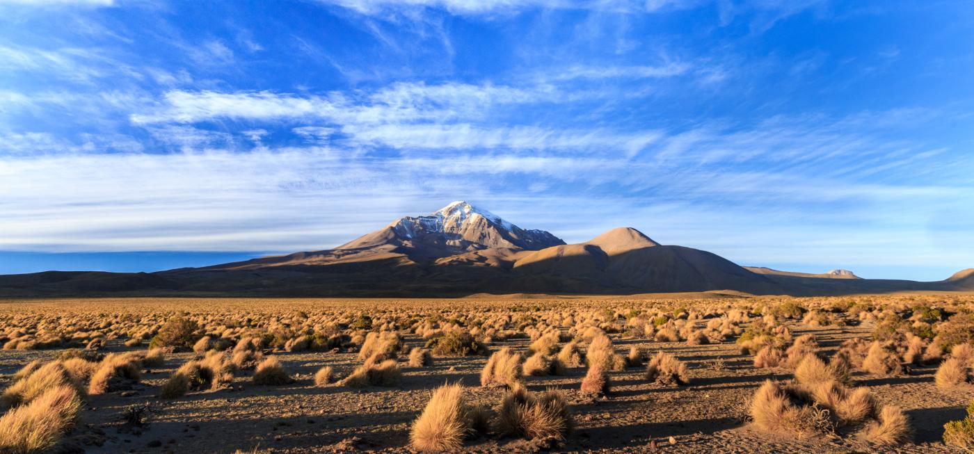 Imagen panorámica del Volcán Isluga y la vegetación árida que lo rodea