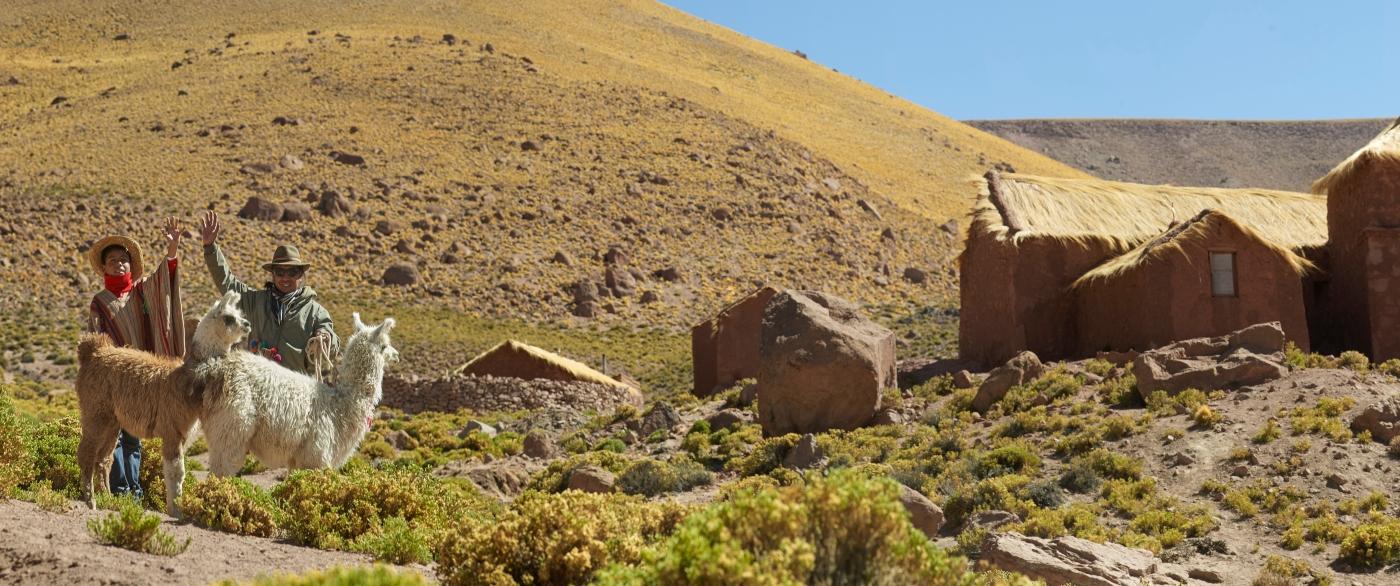 Imagen del pueblo de Machuca donde se ve dos hombres cuidando a dos hermosas llamas en medio del Desierto de Atacama