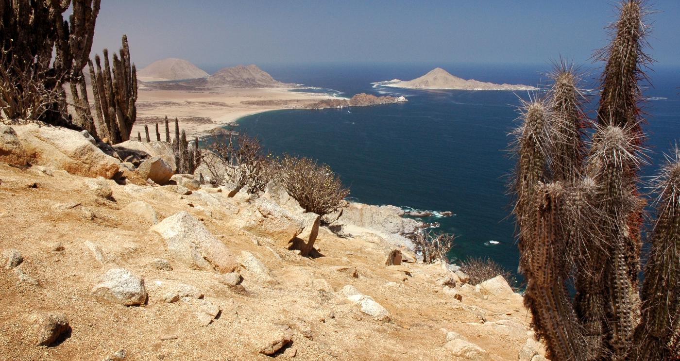 Imagen del Parque Nacional Pan de Azucar donde se ven los roquerios y vegetación le lugar