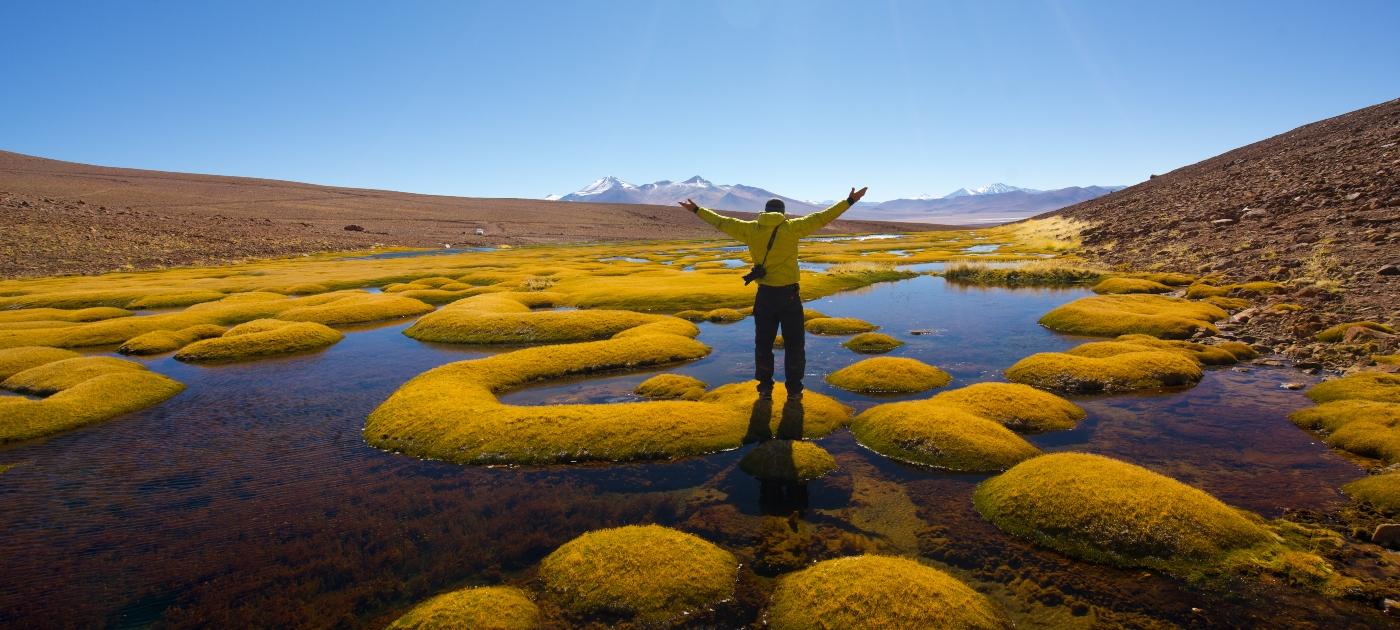 Imagen de un turista disfrutando de la vista de las lagunas naturales de Los Ojos del Salado