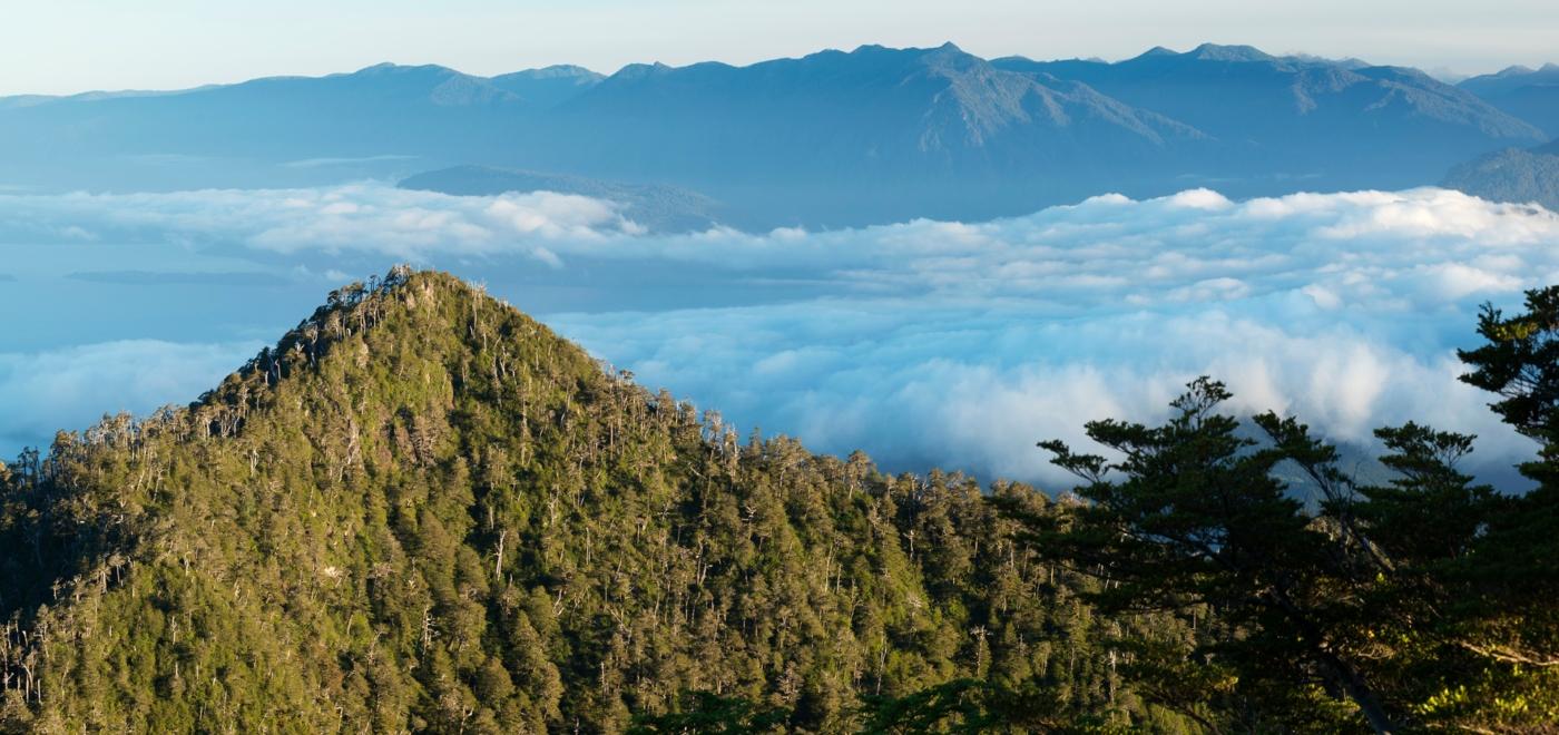 Imagen panorámica del Parque Futangue