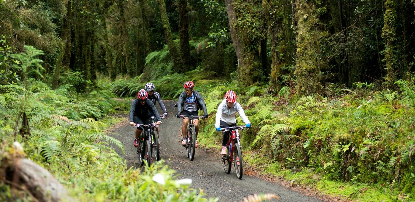 Imagen de un paseo en bicicleta en el Parque Futangue