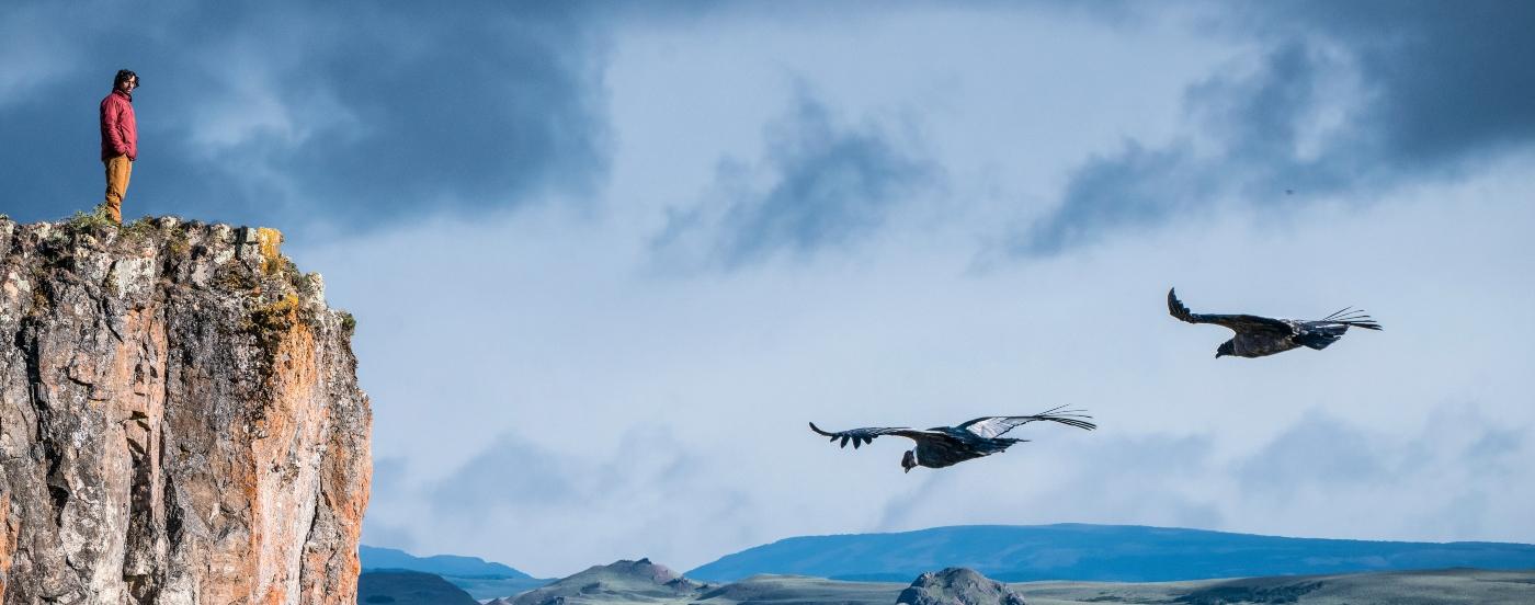 Imagen de un turista disfrutando del vuelo de condores chilenos