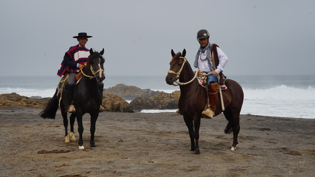 playa-caballo