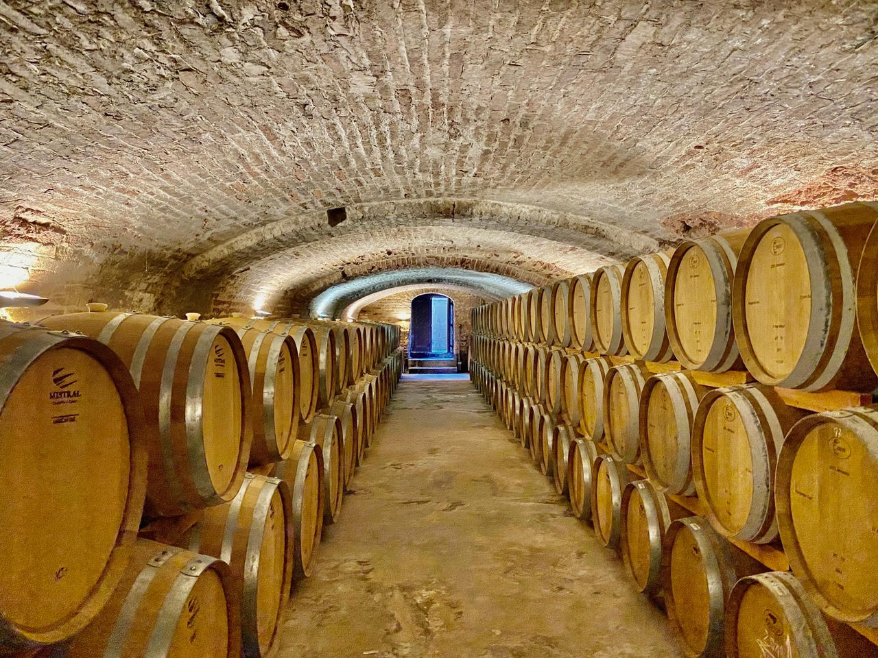 Wine cellar with barrels for storing and aging the Pisco.