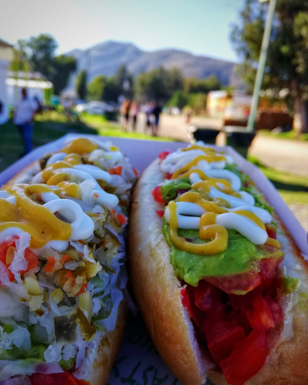 Two completos with different ingredients, ready to eat