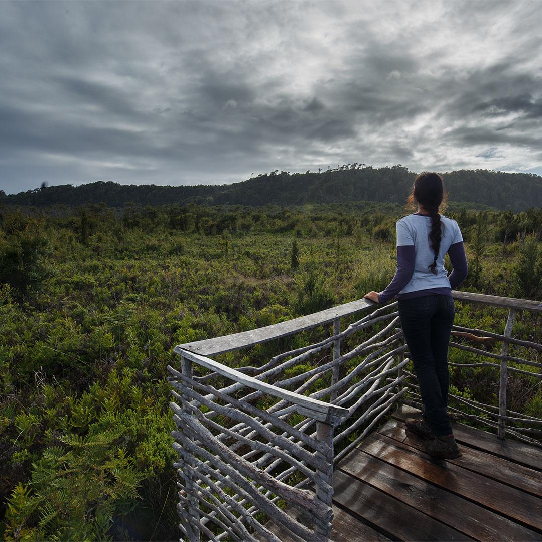 Mirador Parque Nacional de Chiloé