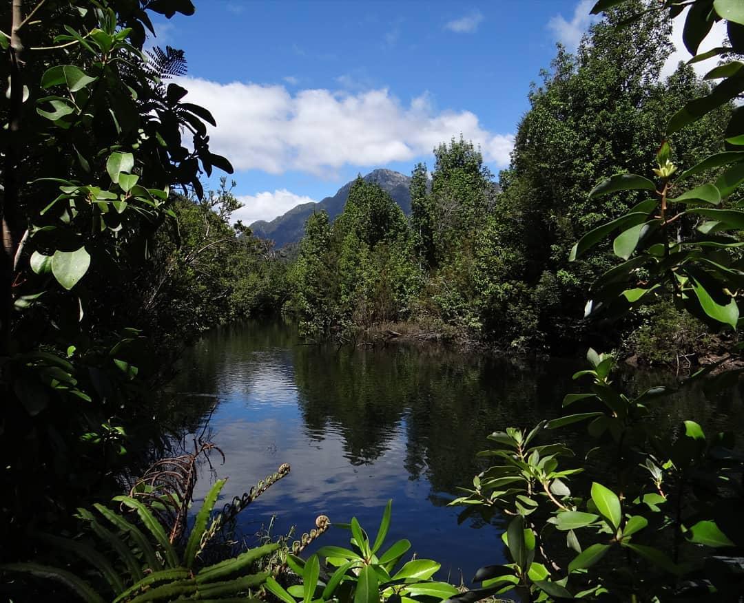 Fiume Lenca, Parco Nazionale Alerce Andino