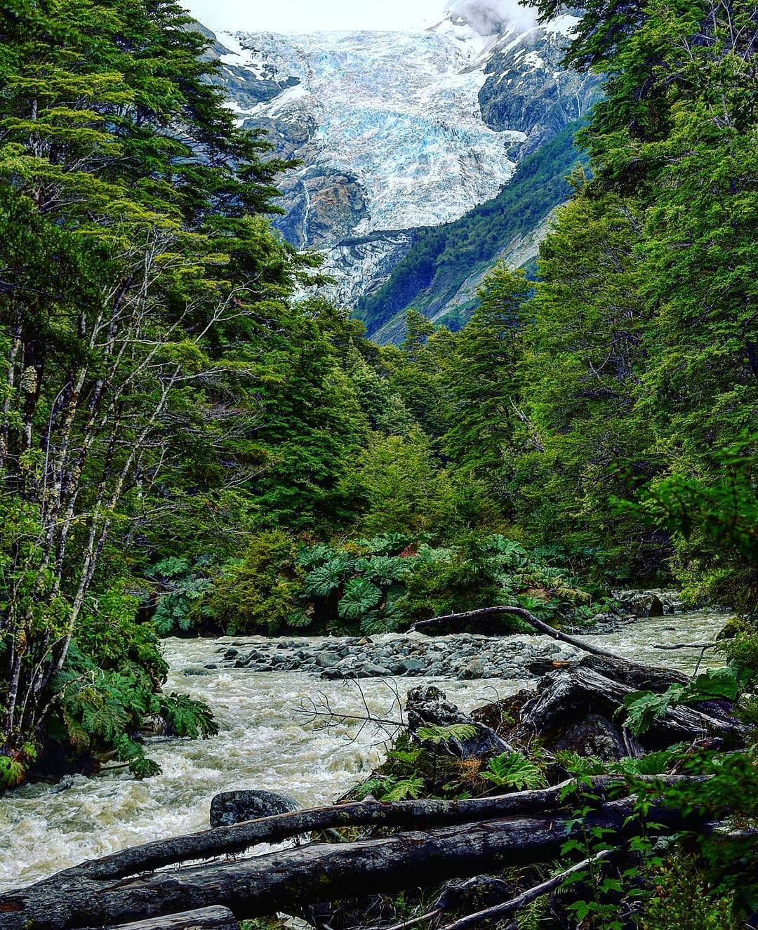 Ventisquero Yelcho Trail at Corcovado National Park