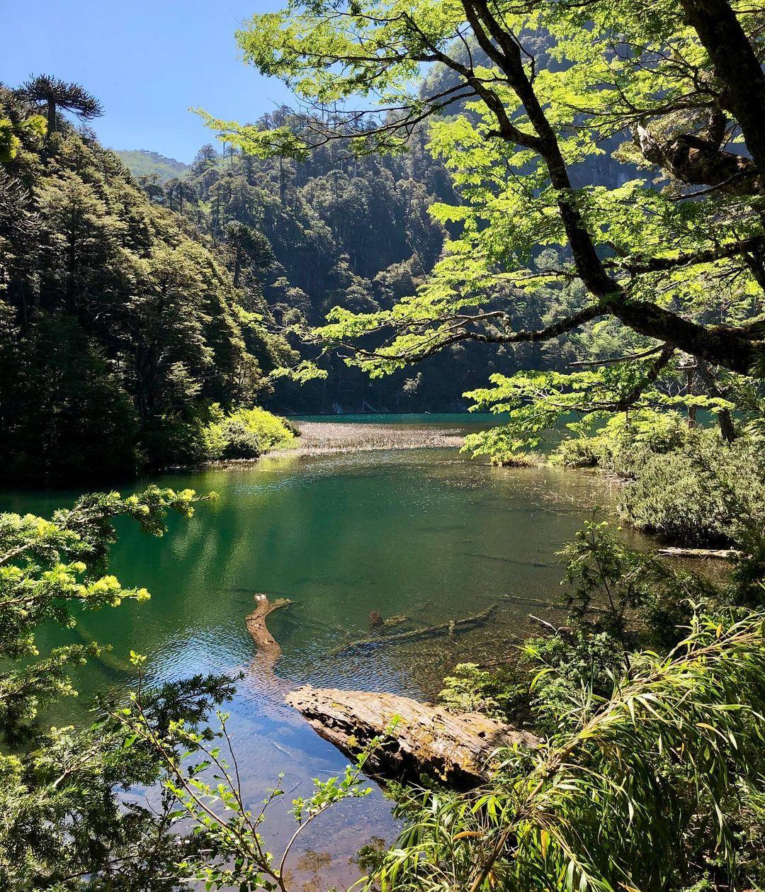 Lac Chico, Parc National Huerquehue