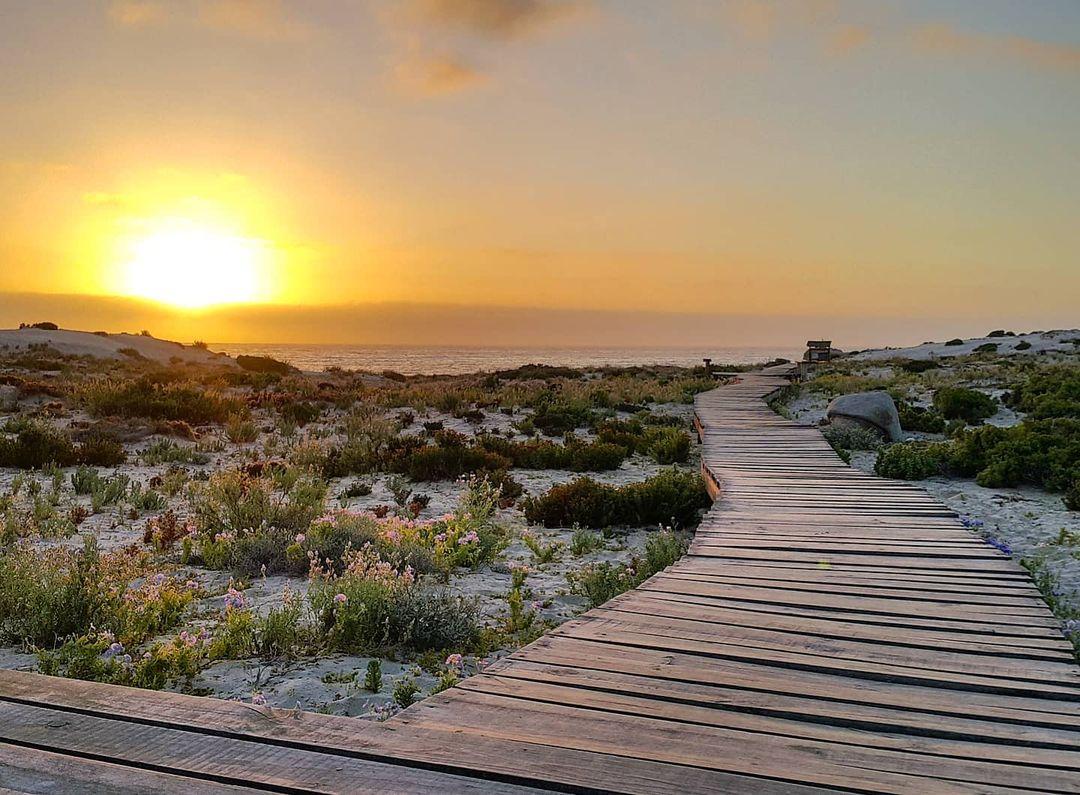 Sendero Playa Blanca, Parque Nacional Llanos de Challe, norte de Chile