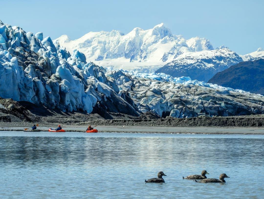 Glaciar Pío XI en Isla Wellington