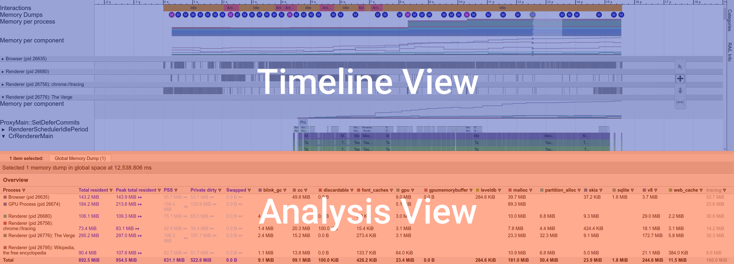 Timeline View and Analysis View