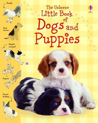 The Usborne Little Book of Dogs and Puppies