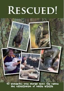 Rescue! 60 Wonderful True Stories About the Rescue and Rehab of Native Wildlife